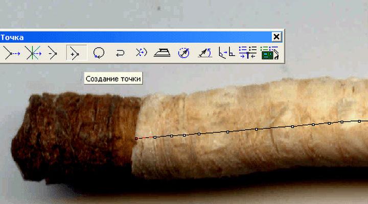 Керны древесины и нестандартное применение ГИС КАРТА